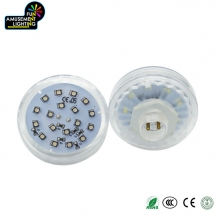 F-24G RGB Changing Color LED